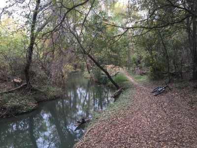 Trail along Geronimo Creek