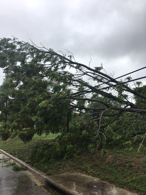 Hurricane Power Outages: Are You Prepared?