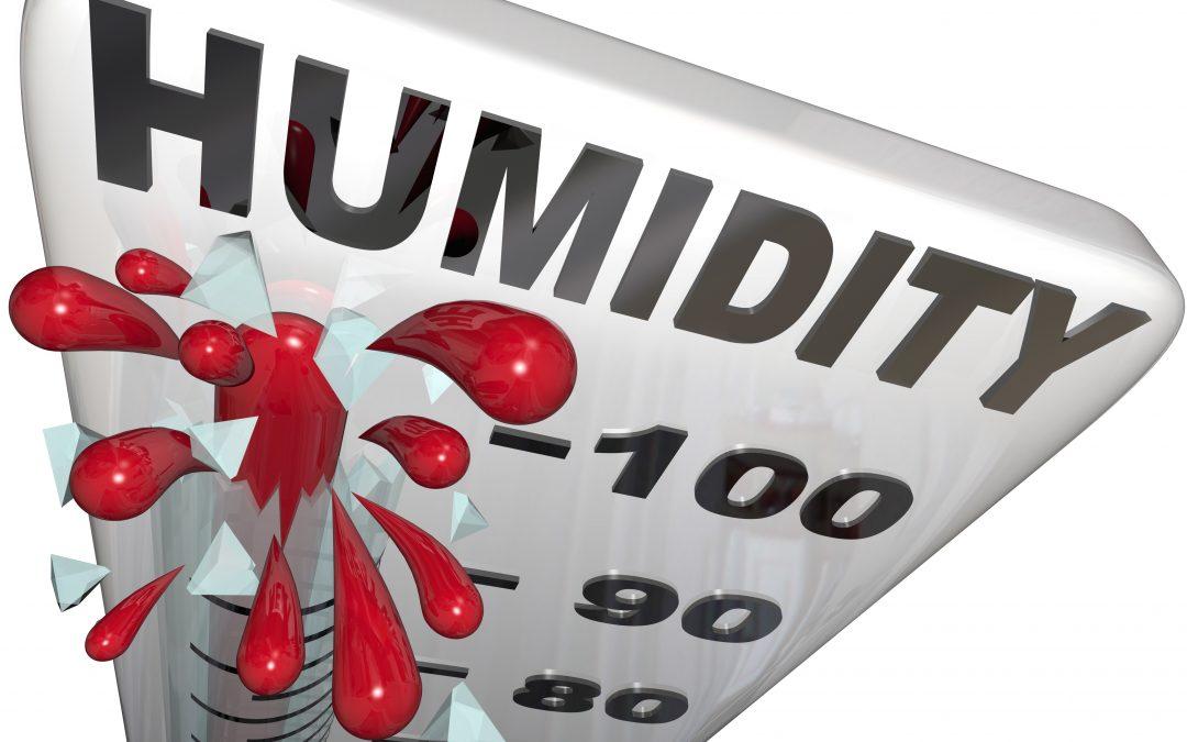You vs. Humidity