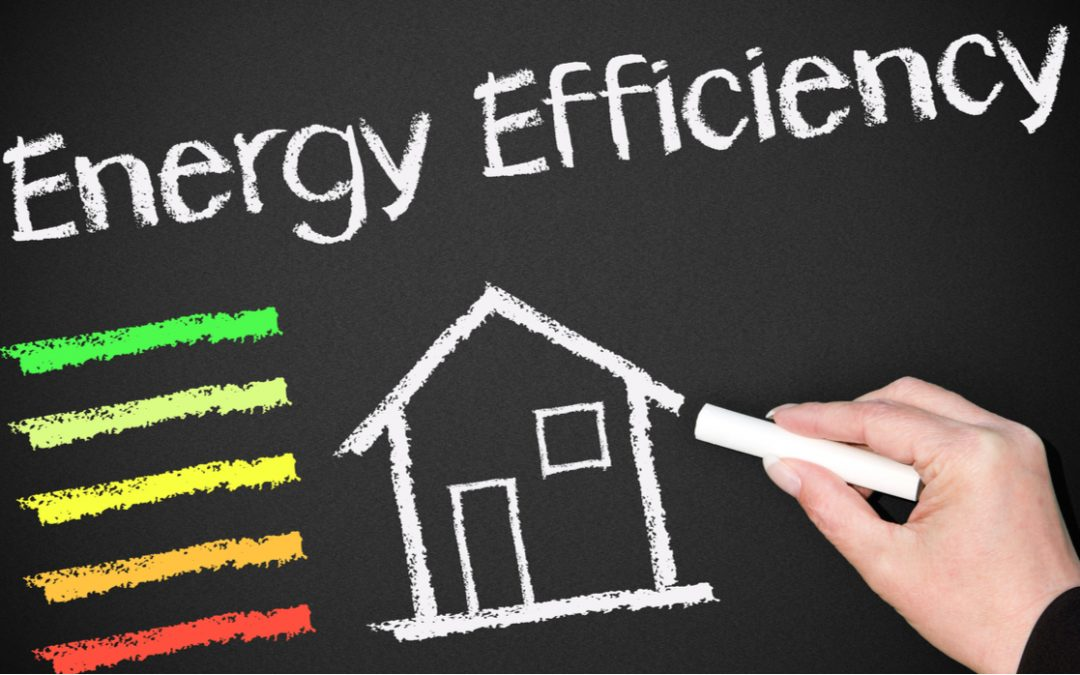 The Rules of Efficiency: Saving Energy While Home from Work and School